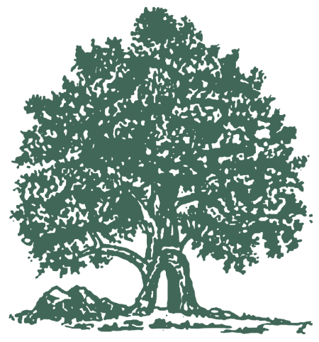 Illustration of a large tree - the lone tree of Lone Tree Cemetery